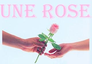 une rose d'amour