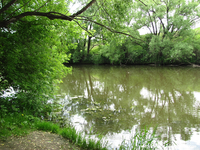 Зарайск, река Осётр