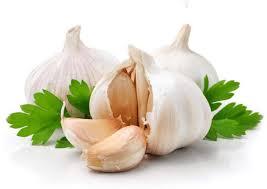 bawang putih untuk mengobati wasir