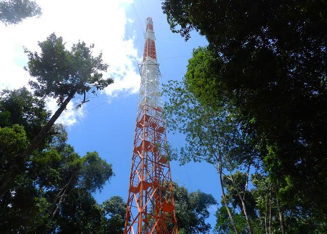 A maior torre do mundo na Amazônia