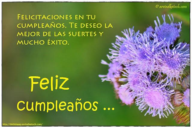 Tarjeta de cumpleaños, deseo, mejor, suertes, éxito, Spanish, Birthday Card