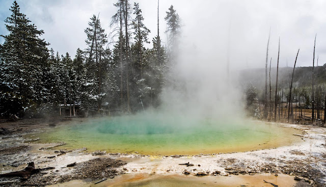 Scientists isolate, culture elusive Yellowstone microbe