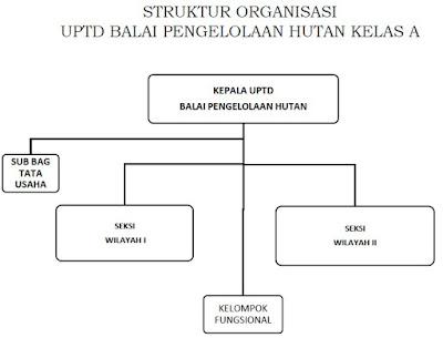 Struktur organisasi UPTD Balai Pengelolaan Hutan Kelas A