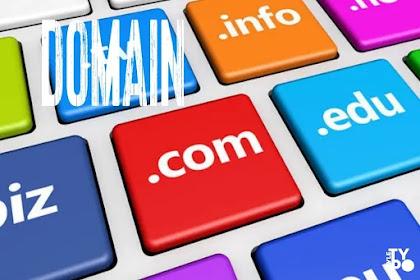 Pengalaman untung dan ruginya memakai domain blogger berbayar