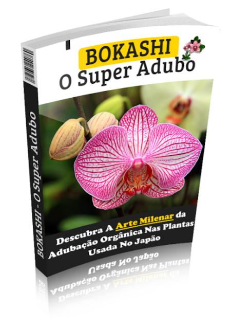 como cuidar de orquideas bonus 02
