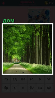 651 слов длинная аллея из деревьев и в конце дом стоит 2 уровень