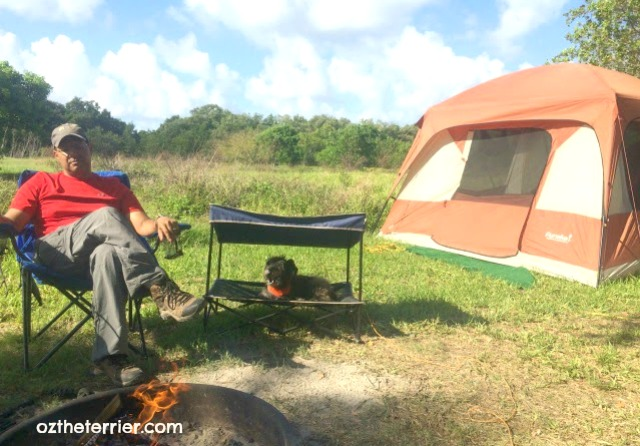 Though Floridau0027s weather is not ideal for tent c&ing year round due to the heat and humidity it still offers some of the most erse habitats for ... & 5 Terrierific Dog-Friendly Places to Camp in Florida | Oz the ...