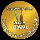 Plebiscyt Szuwary 2013 - Najlepsze programy zarobkowe