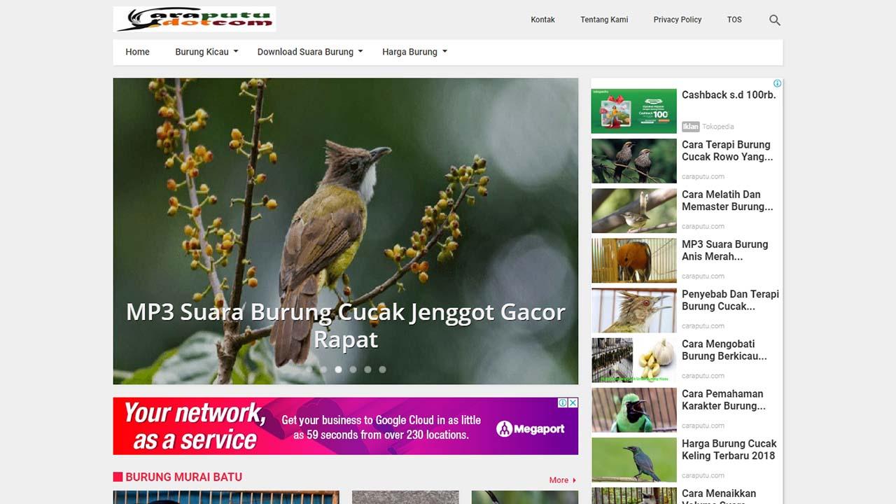 Review Template Kompi Magazine Dari Kompi Ajaib Oleh Caraputu
