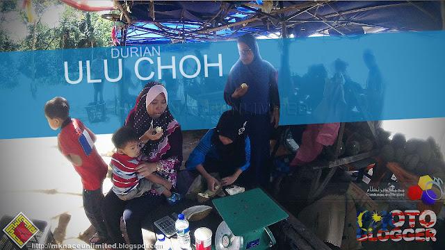 Durian Ulu Choh