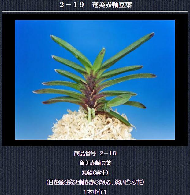 http://www.fuuran.jp/2-19.html