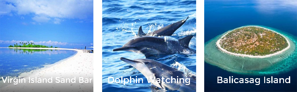 ISLAND HOPPING AND DOLPHIN WATCHING