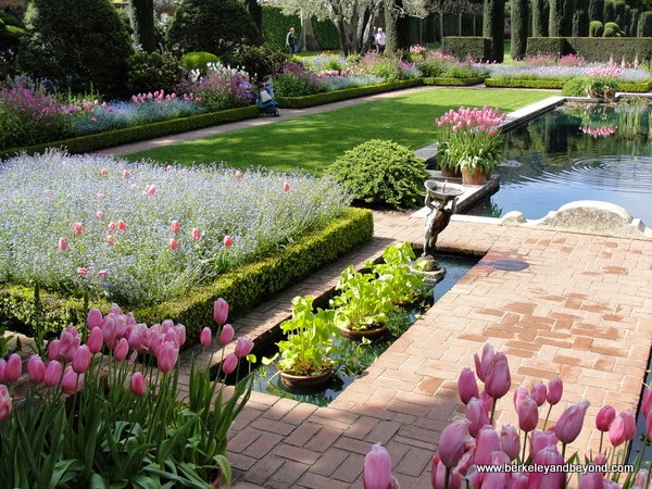 Sunken Garden at Filoli in Woodside, California