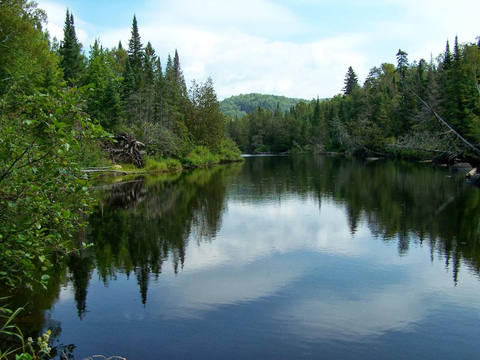 Daniel Lefaivre; la pêche au Québec, truite mouchetée, pêche dans la région de Montréal