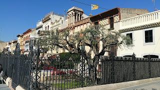Vilassar de Mar. Cases del carrer de Sant Pau