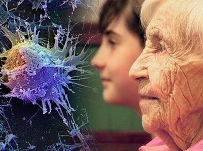 Algunos cerebros envejecen más rápido