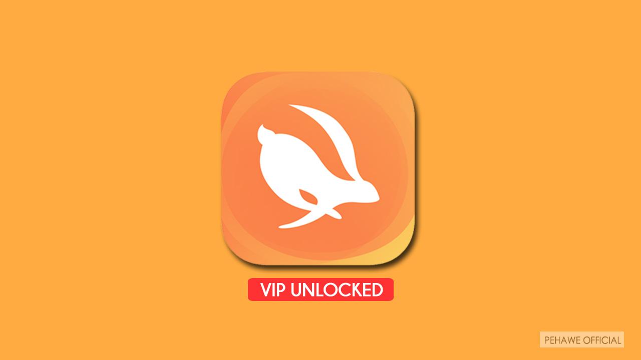 Turbo VPN Pro Unlocked Apk