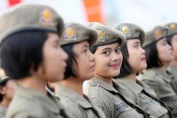 Lowongan Kerja Satuan Polisi Pamong Praja (SATPOL PP)
