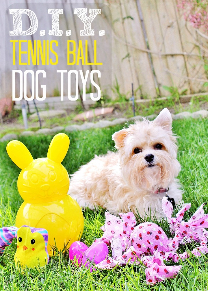 $2 D.I.Y. Tennis Ball Octopus Dog Toy- Celebrate Easter with your pets with you shop at 99 Cents Only Stores. Shop adorable Easter baskets and decor, and grab supplies for affordable D.I.Y pet toys! #99YourEaster #DoThe99 #DoingThe99 #AD