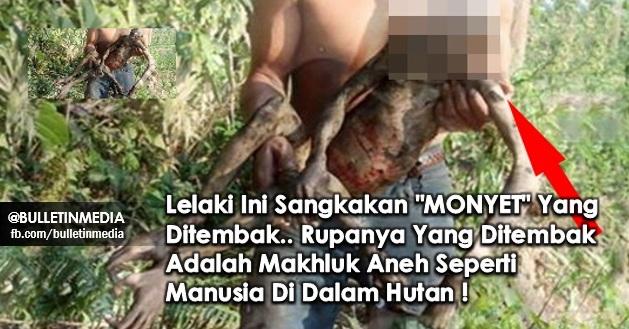 "SUBHANALLAH !! Lelaki Ini Sangkakan ""MONYET"" Yang Ditembak.. Rupanya Yang Ditembak Adalah Makhluk Aneh Seperti Manusia Di Dalam Hutan !"