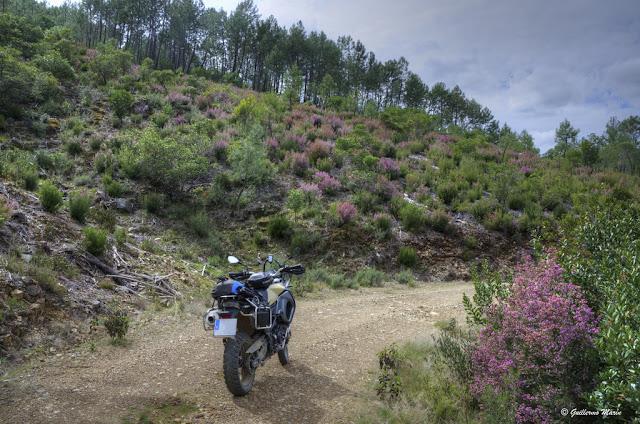BMW F800 GS. Trail Forever. Las Hurdes.