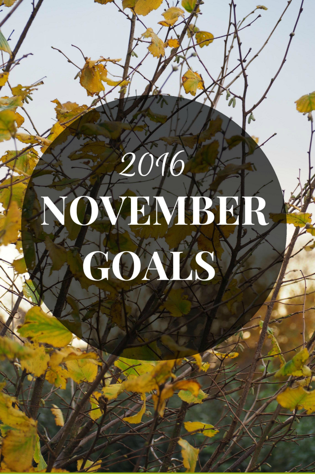 November Goals 2016