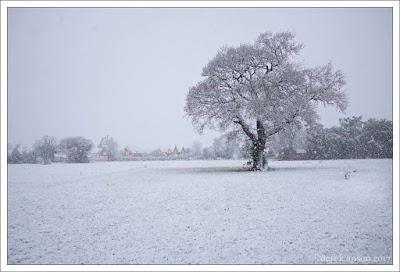 snow, little clacton, clacton on sea, essex, photographer, derek anson,