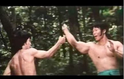 Bruce Le és Bolo Yeung