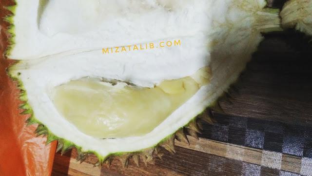 Raja buah,  musim durian,  durian kampung,  jenis jenis durian,  harga durian.  Durian murah,  buah bermusim,  lempok durian,  penggat durian,  serawa durian.  Bubur durian.