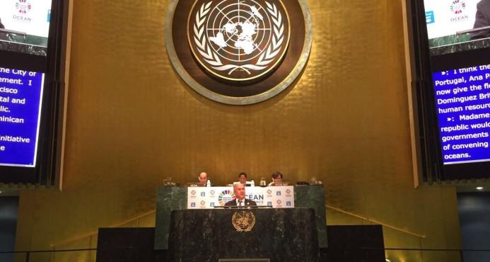 Domínguez Brito aboga en la ONU por ayuda en medio ambiente para Haití
