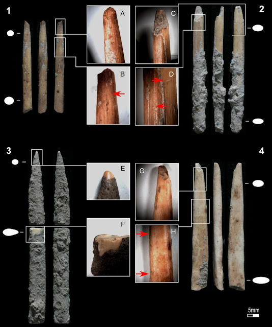 Bone artefacts suggest early adoption of poison-tipped arrow technology in Eastern Africa