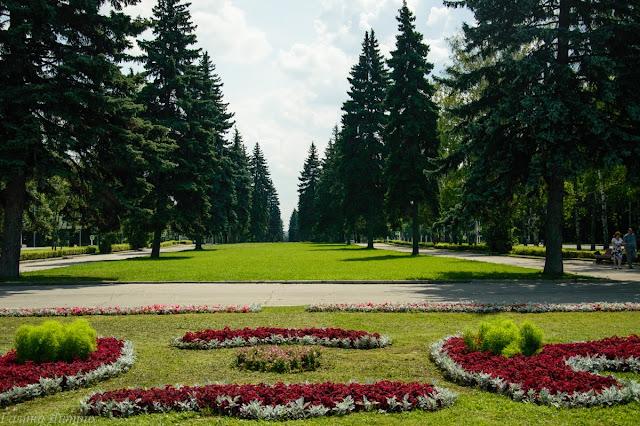Аллея рядом с МГУ