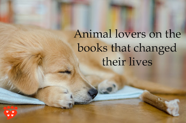 Animal lovers on the books that changed their lives, illustrated by a Golden Retriever sleeping in front of a bookshelf