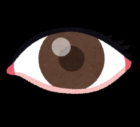 目のイラスト人体 かわいいフリー素材集 いらすとや