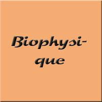 biophysique s3
