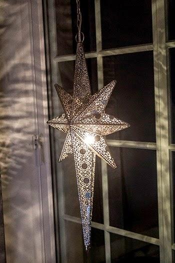 Veldig Et vindu inn i Landstils verden: Verdens vakreste julestjerner! JO-77
