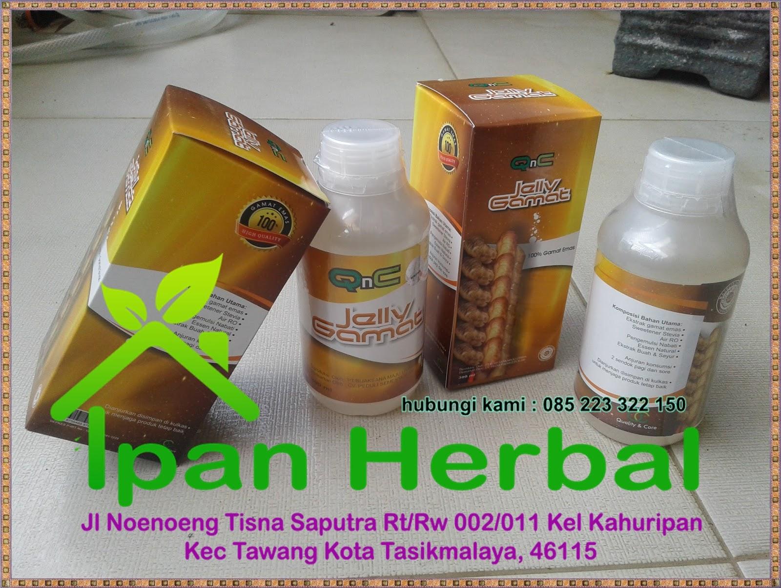 Obat-Tradisional-Untuk-Penyakit-Liver