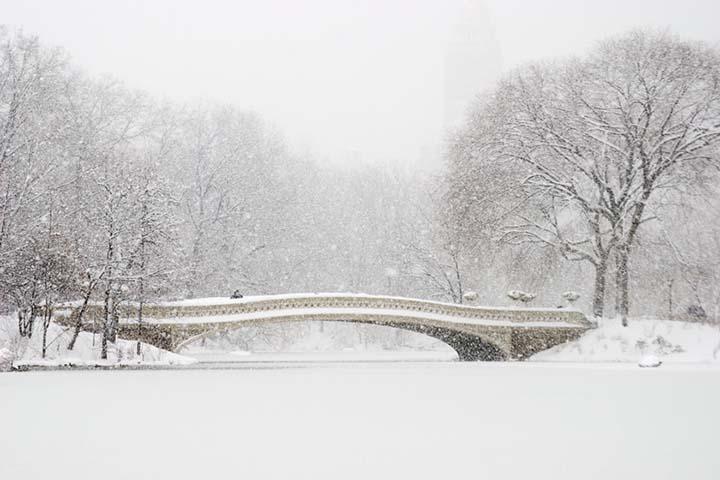 parkata çekilmiş kış resimleri