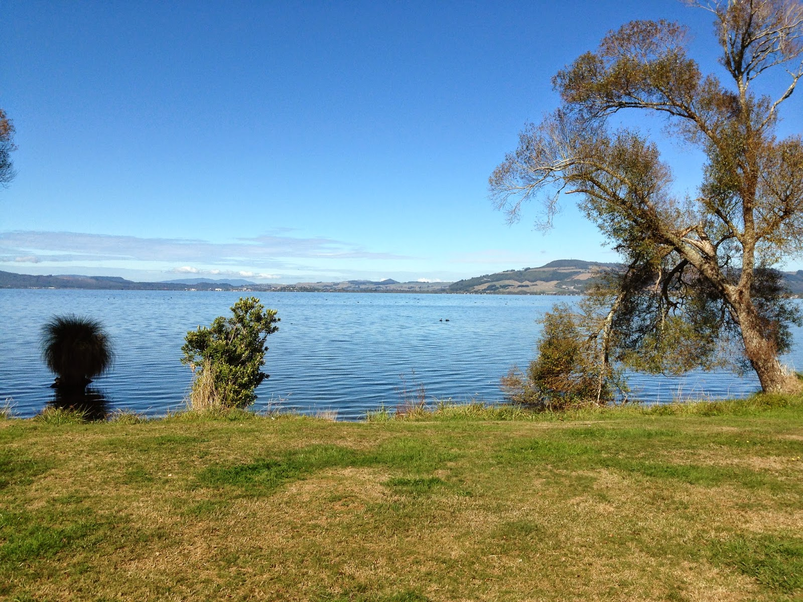 Cycling around Lake Rotorua