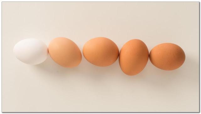 nutrition in eggs