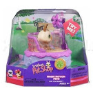 Littlest Pet Shop Magic Motion Rabbit (#MM6) Pet