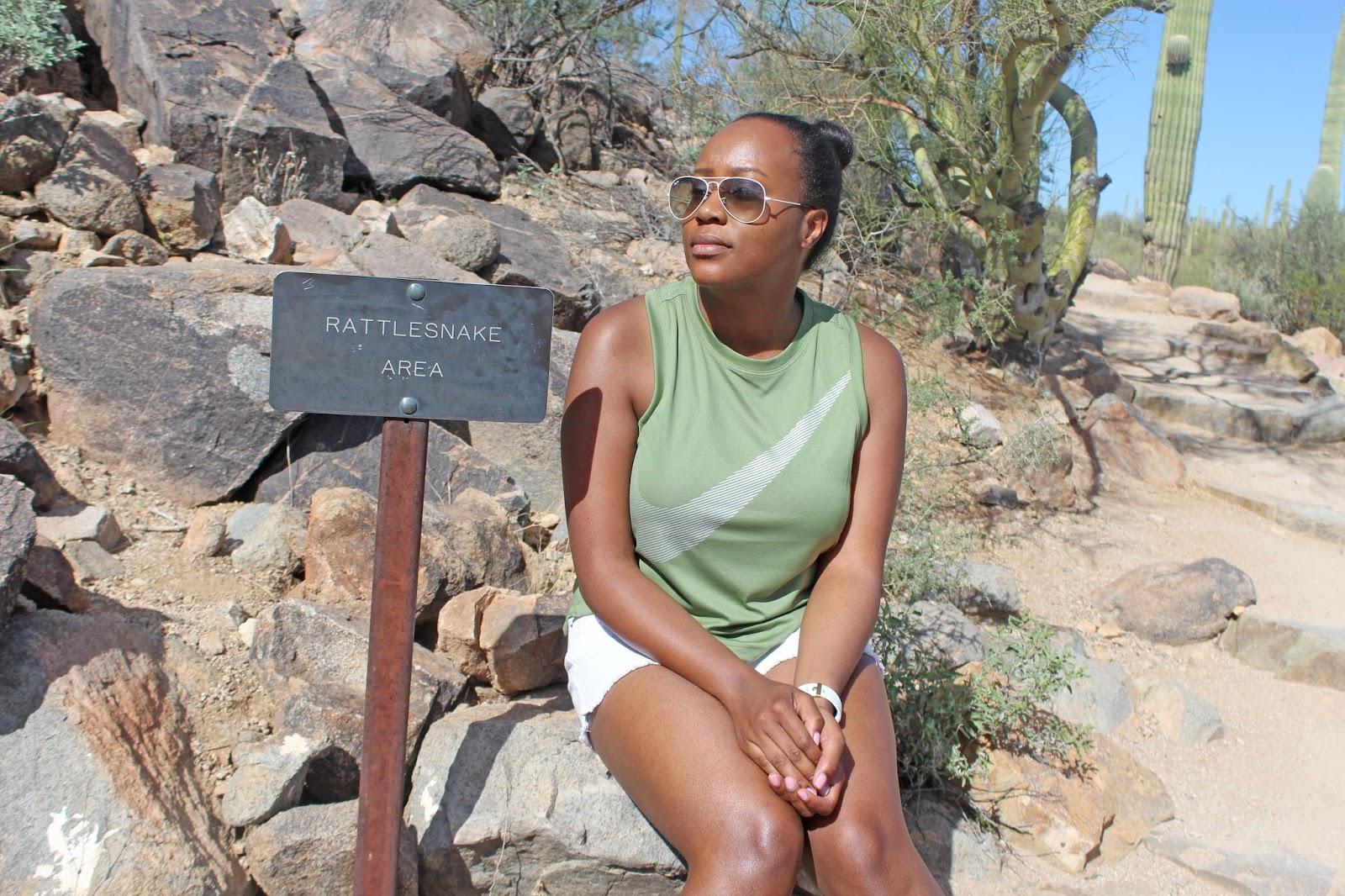 saguaro national park day trip 18