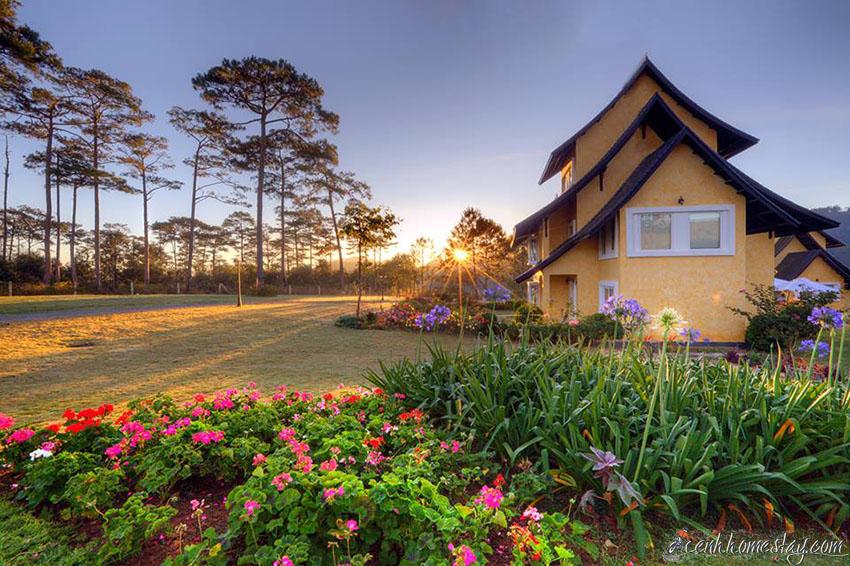 10 Homestay Đà Lạt có vườn farm: dâu tây, rau, hoa, hồng cho khách trải nghiệm