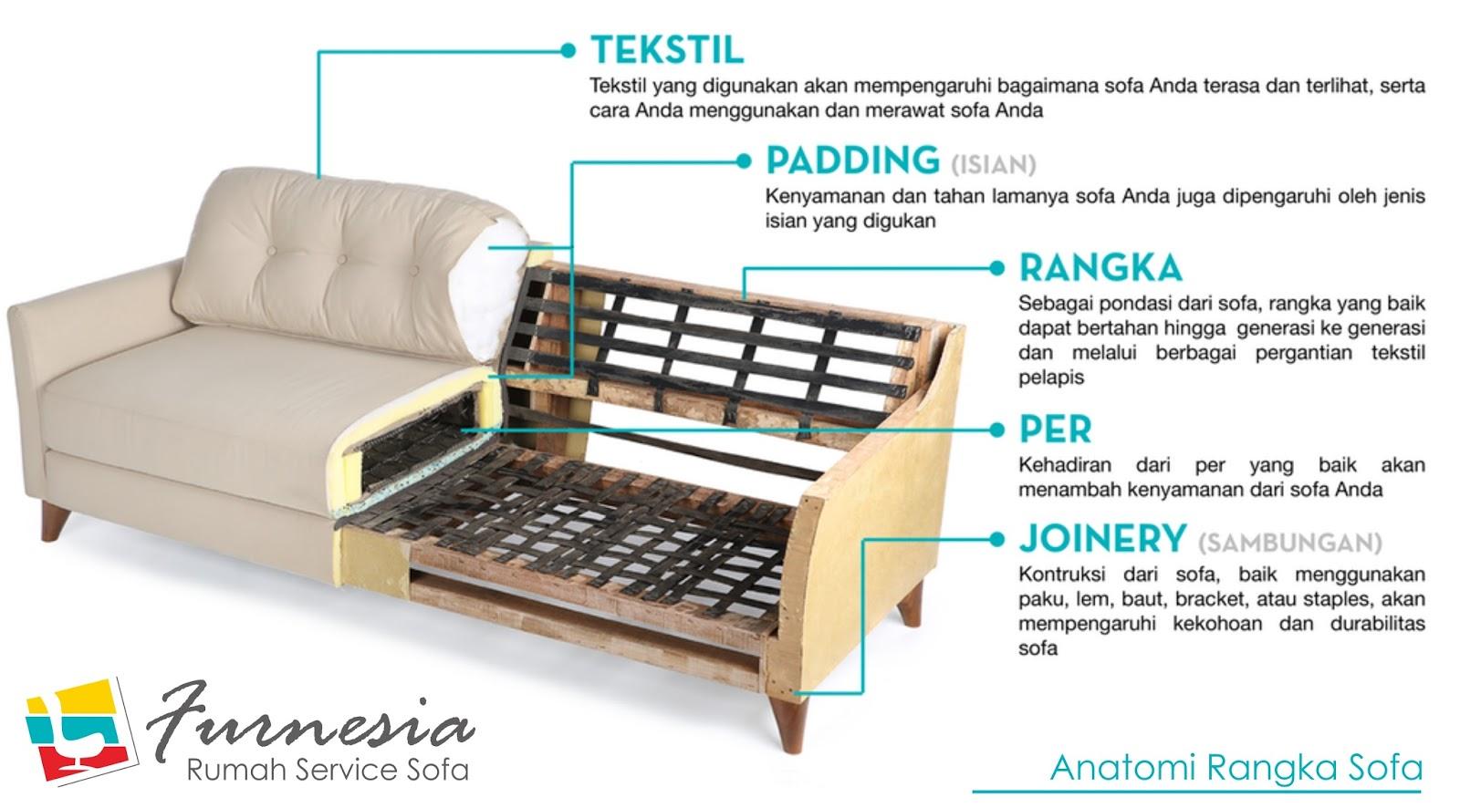 anatomi sofa