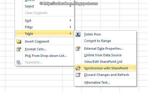 synchronize excel list with sharepoint 2010 list