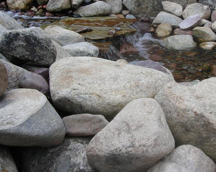 Fine Lines: Art Rocks!!