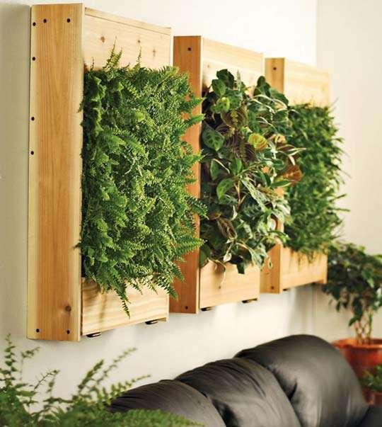 Un jard n vertical en el interior de tu hogar decorar tu - Jardin vertical interior ...