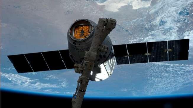 Rusia Mengirimkan Satelit Berisi Tokek ke Ruang Angkasa