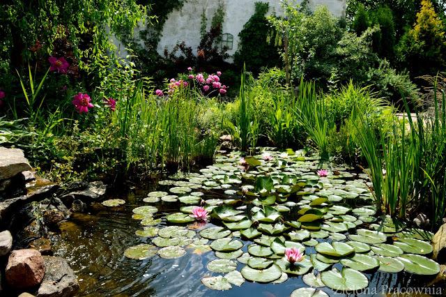 woda w ogrodzie_zielona-pracownia