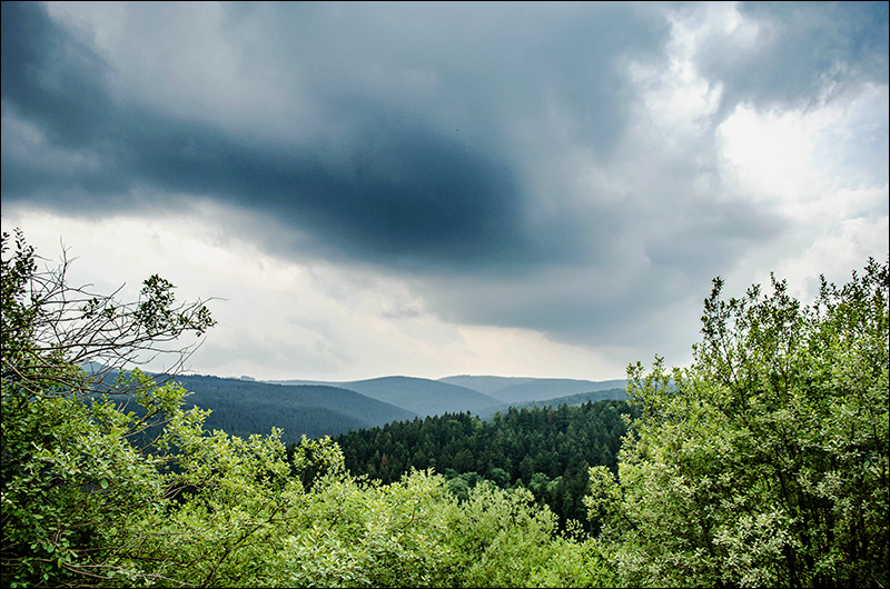 Stephanie Berger - Fotografie - Wandern - NRW Brilon